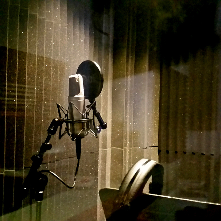 Vocal Iso Booth at JumpDog Audio Productions